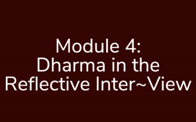 Module 4: Dharma in the Reflective Inter~View